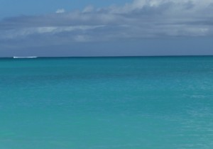 Post YOUR BLISS BEAUTY Caribbean Water Photo by Barbara Ficarra